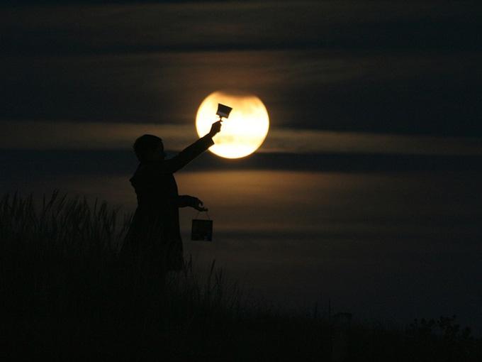lua 8