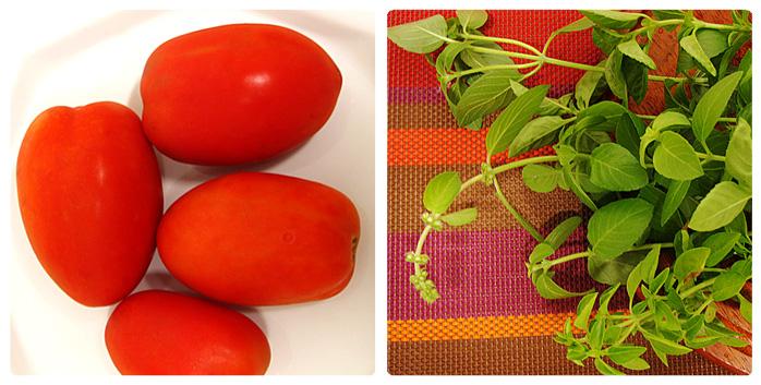 tomates e majericão orgânicos