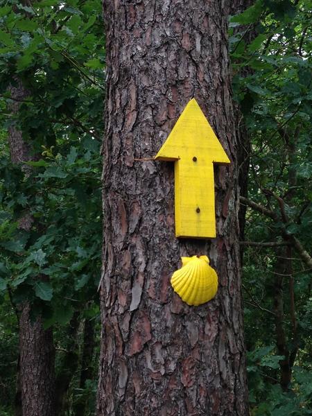 setas amarelas que os peregrinos seguem para não se perderem
