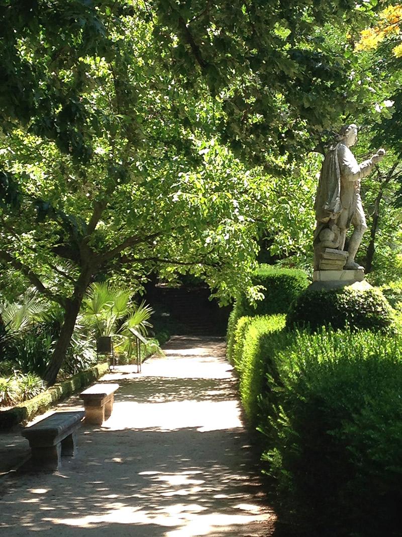 alamedas-jardim-botanico
