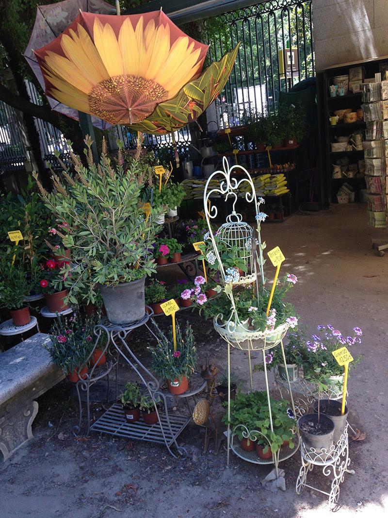 lojinha-jardim-botanico-madri