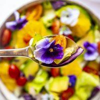 Você já ouviu falar em flores comestíveis?